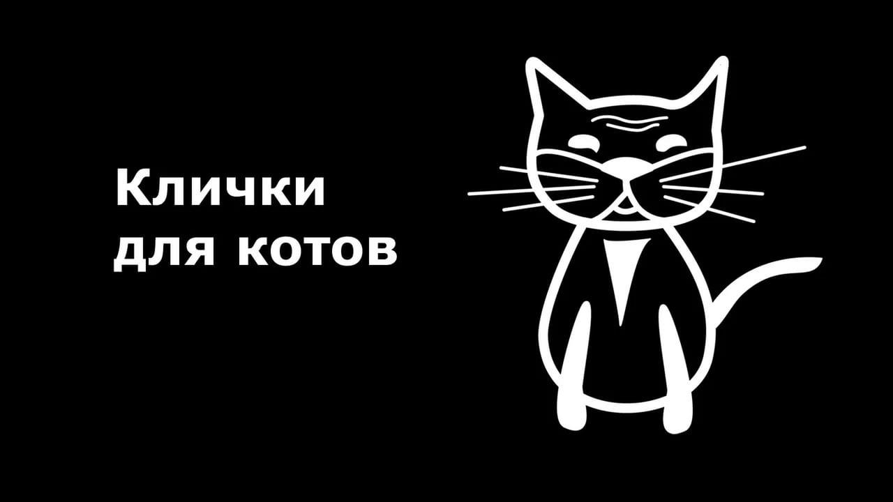 Русское имя для кошки